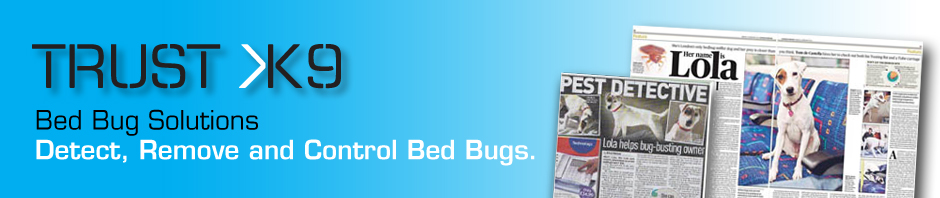 Bed Bug Heat Treatment in Care Home
